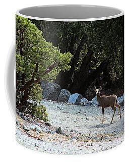 California Mule Deer Coffee Mug