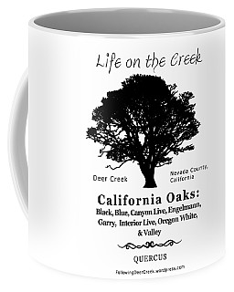 California Oak Trees - Black Text Coffee Mug