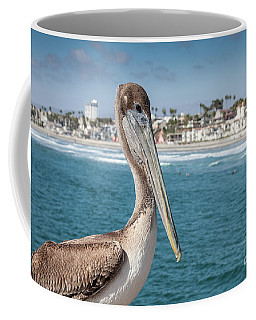 California Pelican Coffee Mug