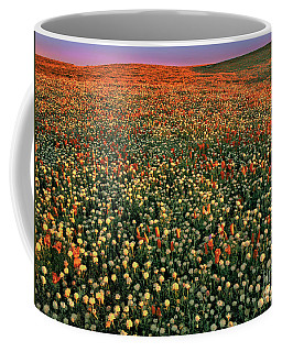 Coffee Mug featuring the photograph California Poppies At Dawn Lancaster California by Dave Welling