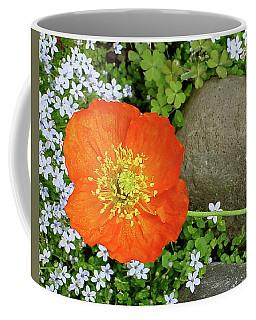 California Poppy Rock Garden Coffee Mug by Shirley Heyn