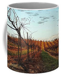California Vineyard In Winter Coffee Mug