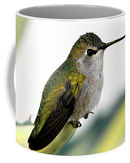 Calliope Hummingbird On Agave Coffee Mug