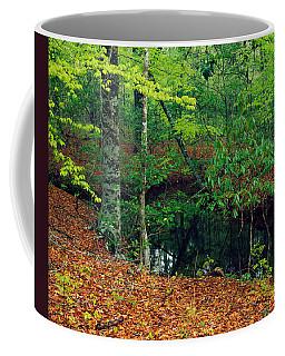 Calm Stream Through Beech And Magnolia Coffee Mug
