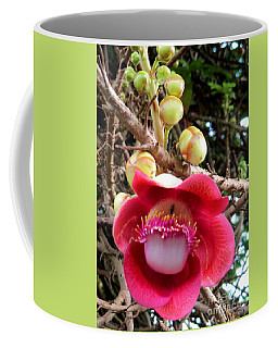 Cambodia Flower 1 Coffee Mug