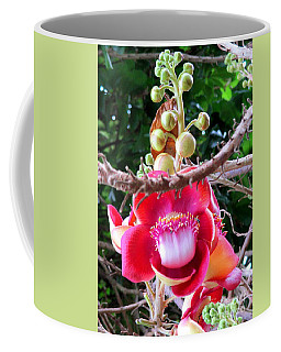 Cambodia Flower 2 Coffee Mug