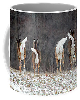 Coffee Mug featuring the photograph Camera Shy by Gary Hall