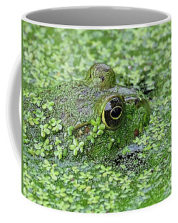 Camo Frog Coffee Mug by Ronda Ryan
