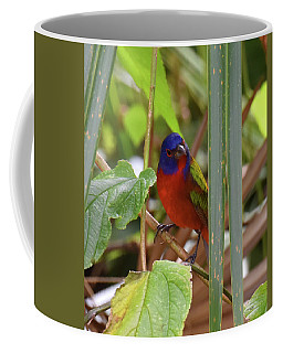 Coffee Mug featuring the photograph Camouflage? by Sally Sperry
