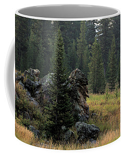 Campground Springs Coffee Mug