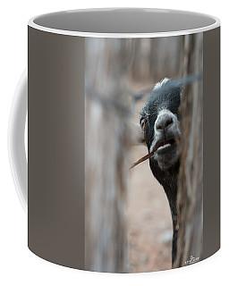 Can I Play? Coffee Mug