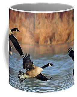 Canada Geese #1 Coffee Mug