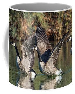 Canada Geese 5659-092217-1cr-p Coffee Mug