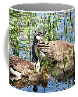 Coffee Mug featuring the photograph Canada Geese Family On Lily Pond by Rose Santuci-Sofranko