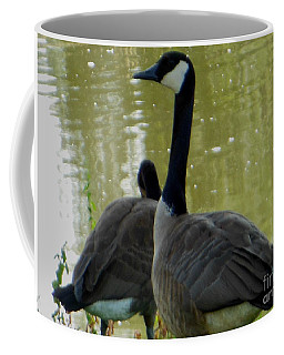Coffee Mug featuring the photograph Canada Goose Edge Of Pond by Rockin Docks Deluxephotos