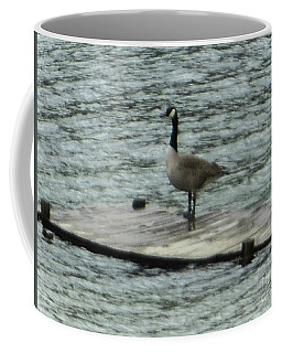 Coffee Mug featuring the photograph Canada Goose Lake Dock by Rockin Docks Deluxephotos