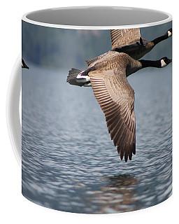 Canada's Goose Coffee Mug by Cathie Douglas