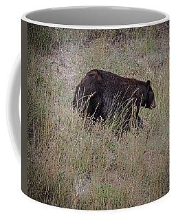 Canadian Black Bear Coffee Mug