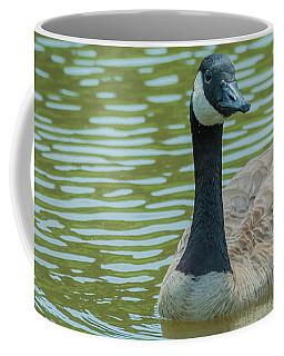 Canadian Goose Img 1 Coffee Mug