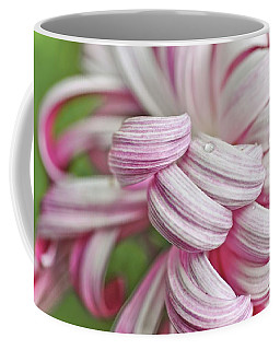 Candy Cane Petals Coffee Mug