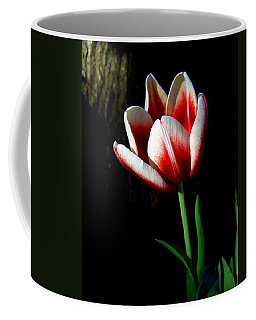 Candy Cane Tulip Coffee Mug