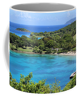 Caneel Bay St. John Coffee Mug by Fiona Kennard