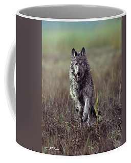 Canis Lupus Coffee Mug by Tim Fitzharris
