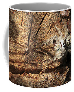 Canopy Jumping Spider Coffee Mug