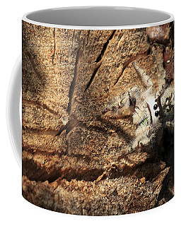 Canopy Jumping Spider Coffee Mug