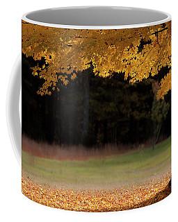 Canopy Of Autumn Gold Coffee Mug