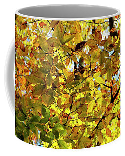 Coffee Mug featuring the photograph Canopy Of Autumn Leaves  by Angie Tirado