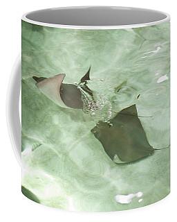Coffee Mug featuring the photograph Can't Catch Me by Carol Lynn Coronios