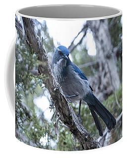 Canyon Jay Coffee Mug