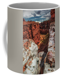 Canyon Lands Quartz Falls Overlook Coffee Mug by Gary Warnimont