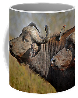 Coffee Mug featuring the photograph Cape Buffalo And Their Housekeeper by Joe Bonita