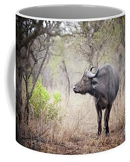 Cape Buffalo In A Clearing Coffee Mug