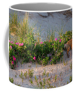 Coffee Mug featuring the photograph Cape Cod Beach Fox by Bill Wakeley