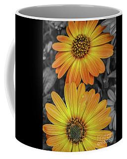 Cape Daisy's - Orange Coffee Mug