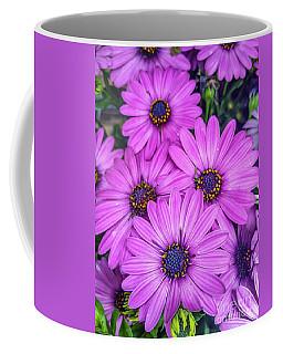 Cape Daisys - Purple Coffee Mug