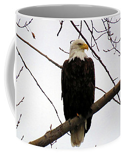 Cape Eagle Coffee Mug