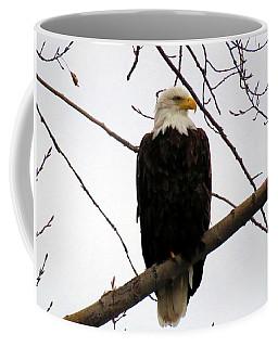 Cape Eagle Coffee Mug