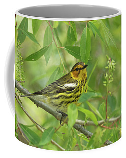 Cape May Warbler Coffee Mug
