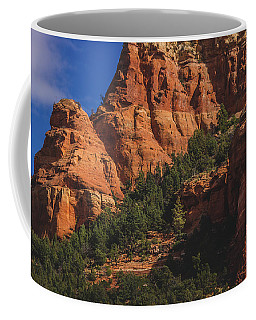Coffee Mug featuring the photograph Capitol Butte Details by Andy Konieczny