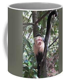 Capuchin Monkey 4 Coffee Mug by Randall Weidner