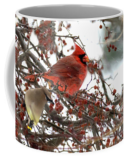 Cardinal And Cedar Wax Wing Feeding On Crab Apples Coffee Mug