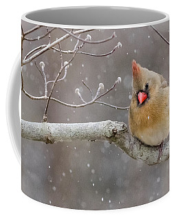 Cardinal And Falling Snow Coffee Mug