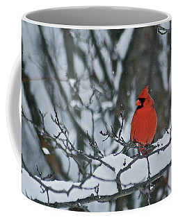Cardinal And Snow Coffee Mug