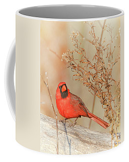Cardinal In Fall  Coffee Mug