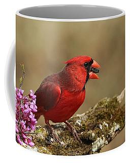 Cardinal In Spring Coffee Mug