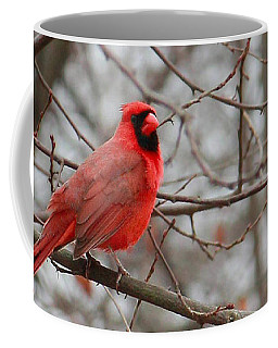 Cardinal In The Winter Coffee Mug